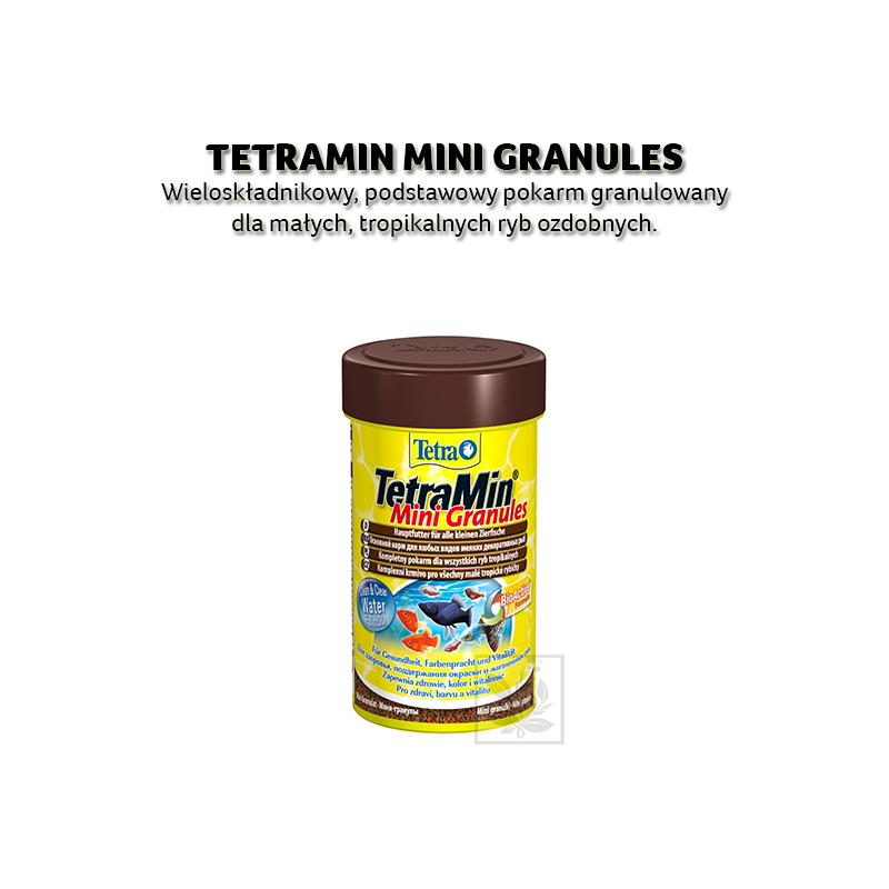 Karma dla rybek tetra tetramin mini granules 100 ml [t199057]