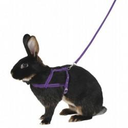 KERBL Uprząż dla królika,...